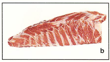 Pork-Spare-Ribs.jpg